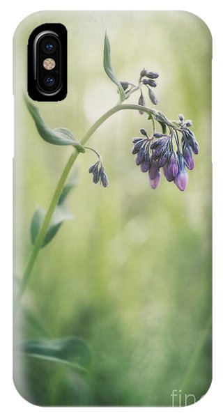 Grass iPhone Case - The Arrival Of Spring by Priska Wettstein