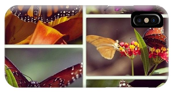 Cause iPhone Case - Butterfly Garden by Heidi Hermes