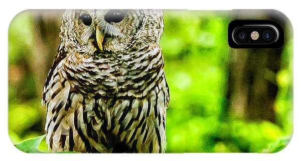 The Barred Owl IPhone Case