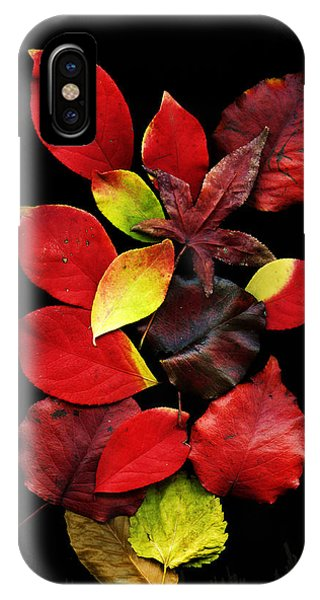 The Beautiful Colors Of Nature IPhone Case