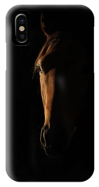 The Beauty Of The Thoroughbred Phone Case by Sharon Lee Chapman