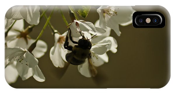 The Bee IPhone Case