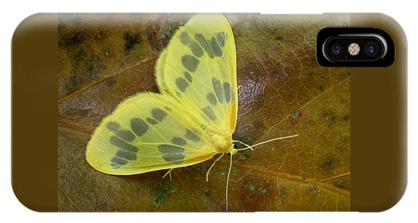 The Beggar Moth IPhone Case