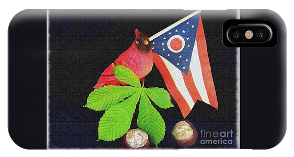 The Buckeye State IPhone Case