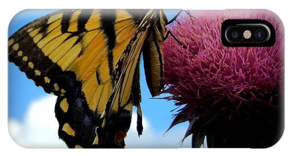 The Butterfly And The Milkweed IPhone Case