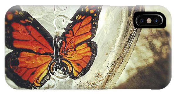 Insect iPhone Case - The Butterfly by Carrie Ann Grippo-Pike