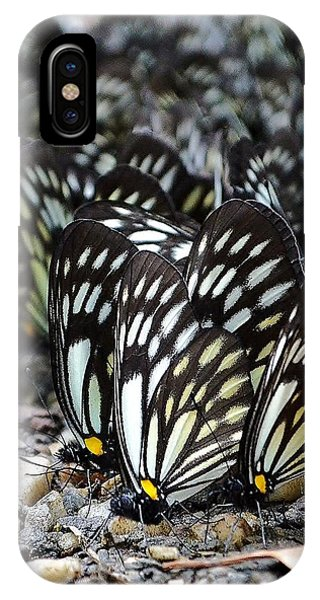 The Butterfly Gathering 2 IPhone Case
