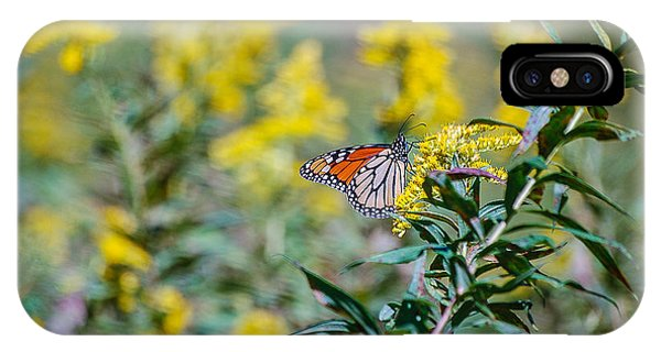 iPhone Case - The Butterfly by George Fredericks