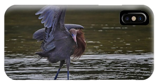The Canopy Dance Phone Case by Gary Hall