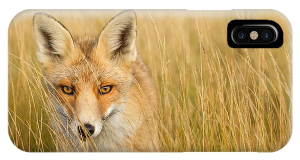Fall iPhone Case - The Catcher In The Grass by Roeselien Raimond