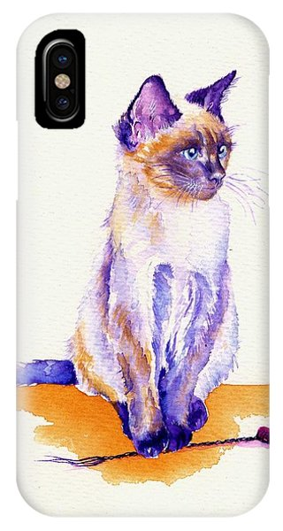 Cat iPhone Case - The Catmint Mouse Hunter by Debra Hall