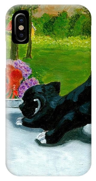 The Close Encounter Of A Cat And Fish IPhone Case