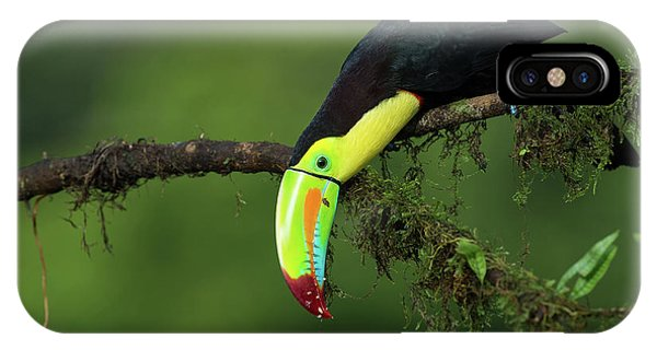 The Colors Of Costa Rica IPhone Case