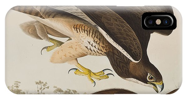 The Common Buzzard IPhone Case