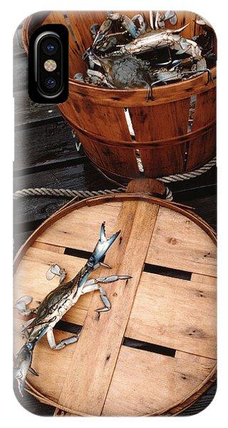 Chesapeake Bay iPhone X Case - The Cranky Crab by Skip Willits