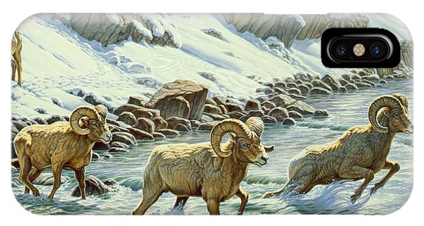 Yellowstone iPhone Case - The Crossing - Bighorn by Paul Krapf