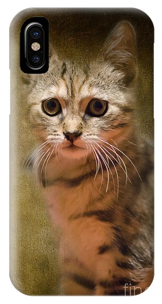The Cutest Kitty IPhone Case