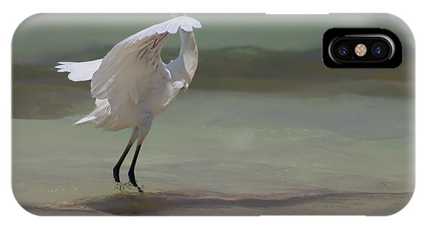 Egrets iPhone Case - The Dance by John Edwards