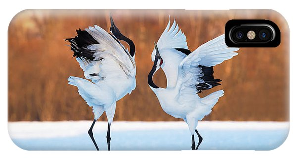 The Dance Of Love IPhone Case