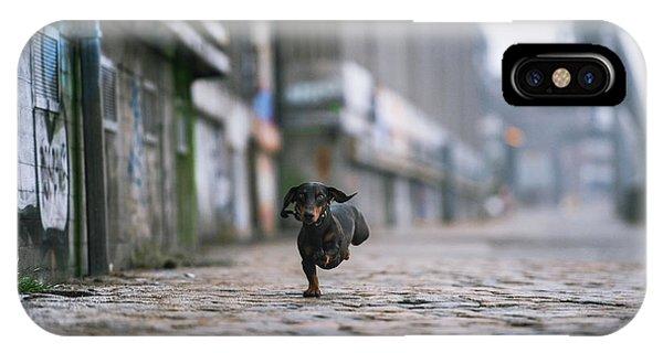 Prairie Dog iPhone Case - The Dark Side Of Hamburg by Heike Willers