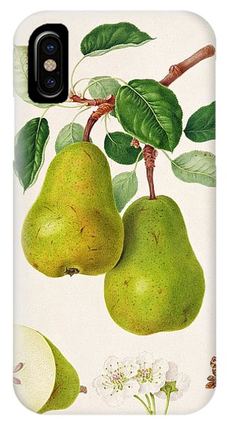 The D'auch Pear IPhone Case