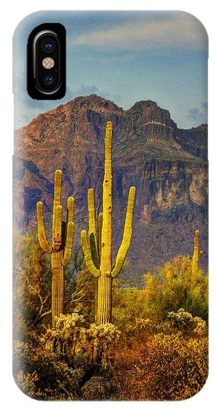 The Desert Golden Hour II  IPhone Case