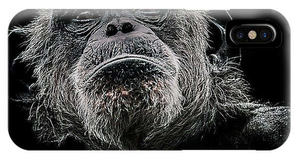 Chimpanzee iPhone Case - The Dictator by Paul Neville