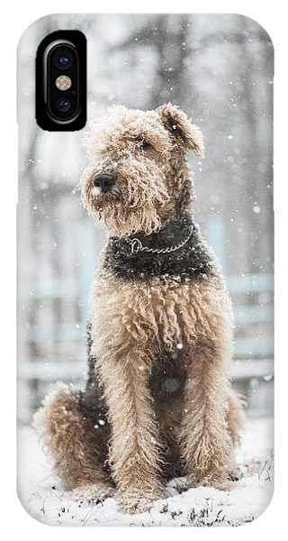 The Dog Under The Snowfall IPhone Case