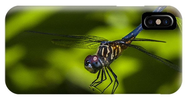 The Dragon Fly IPhone Case