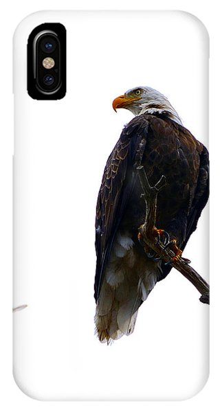 The Eagle And The Hummingbird IPhone Case