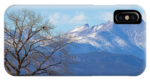 The Eagle's View IPhone Case