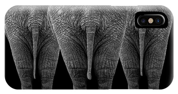 Trio iPhone Case - The Elephants by Sayyed Nayyer Reza