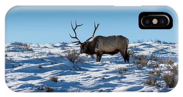 The Elk IPhone Case