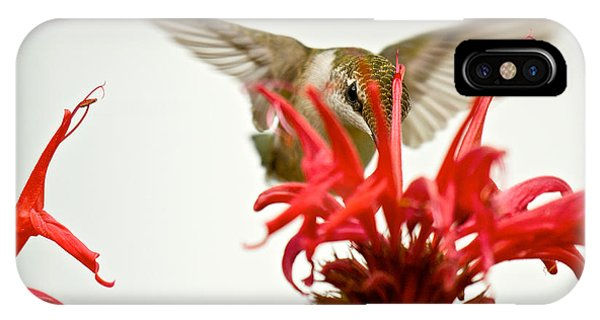 The Eye Of The Hummingbird IPhone Case