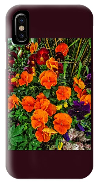 Fall Pansies IPhone Case