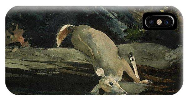 iPhone Case - The Fallen Deer by
