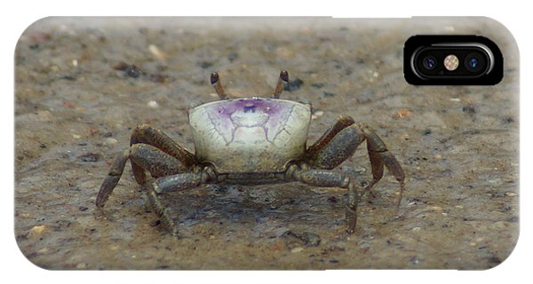 The Fiddler Crab On Hilton Head Island IPhone Case