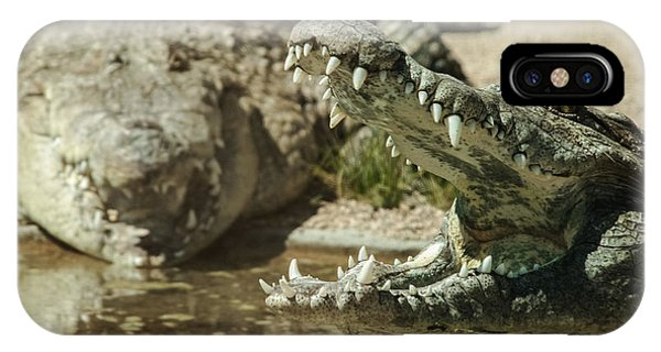 IPhone Case featuring the photograph The Fool Crocodile by Stwayne Keubrick