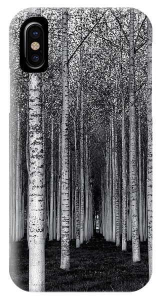 French iPhone Case - The Forest For The Trees by David Scarbrough