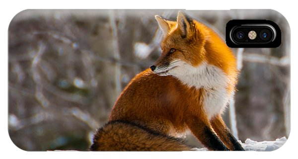 The Fox 2 IPhone Case