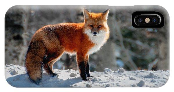 The Fox 3 IPhone Case