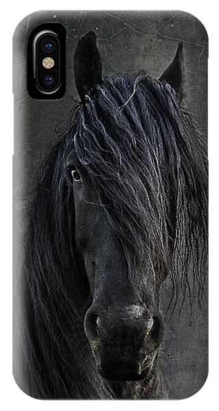 Equine iPhone Case - The Frisian by Joachim G Pinkawa