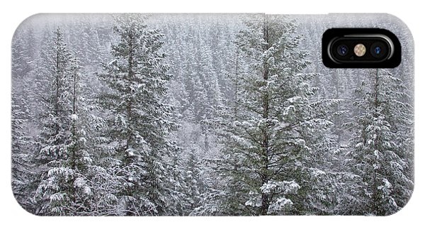 The Frozen Forest IPhone Case