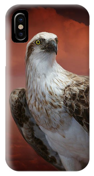 The Glory Of An Eagle IPhone Case