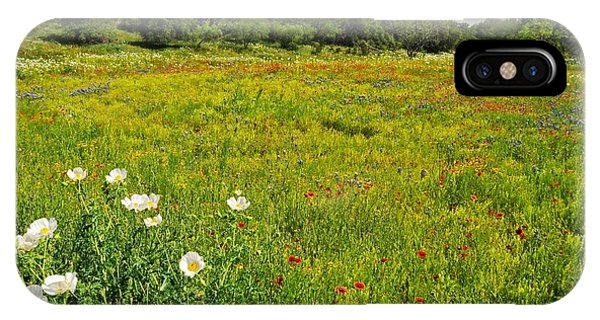 The Glory Of Spring IPhone Case