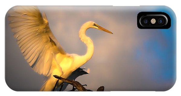 The Golden Egret IPhone Case
