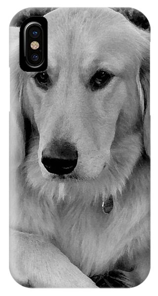 The Golden Retriever IPhone Case