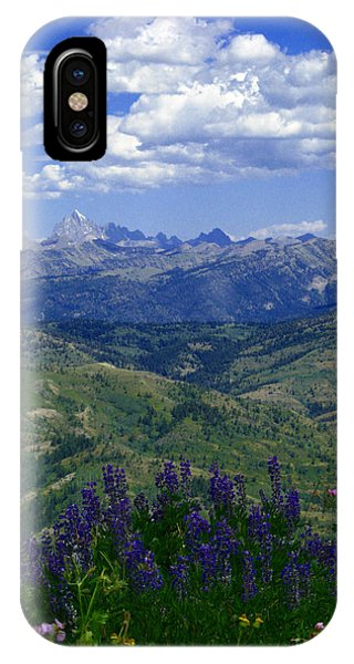The Grand And Lupines IPhone Case