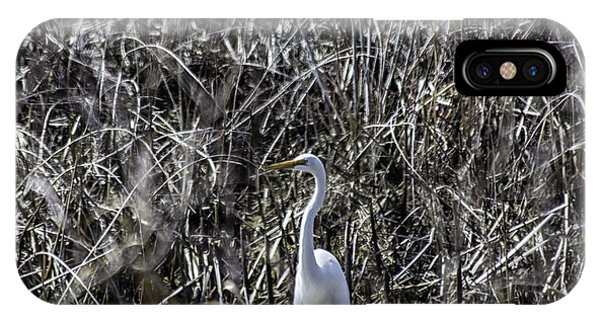 The Great Egret Phone Case by Kris Rowlands