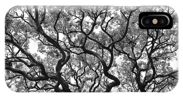 The Great Oak In Black And White IPhone Case